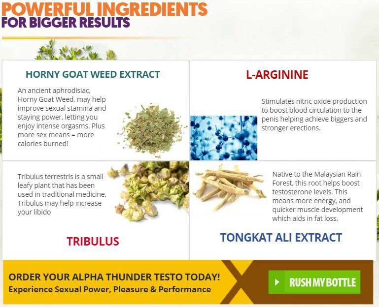 Alpha Thunder Testo ingredients